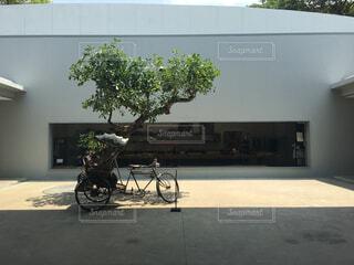 自転車の写真・画像素材[462801]