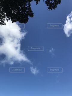 青空の写真・画像素材[1559323]