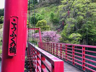 背景にある赤い橋の写真・画像素材[2120479]