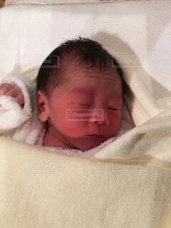 眠る赤ちゃんの写真・画像素材[1559454]
