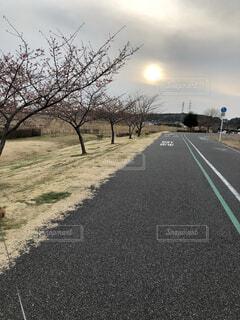 サイクリングコースの写真・画像素材[1560653]