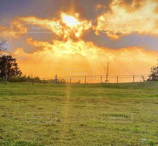 輝く夕陽の写真・画像素材[1575978]