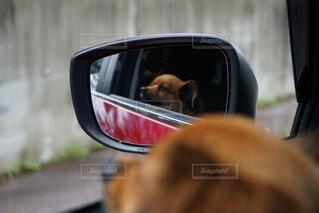 ドライブ大好き♡の写真・画像素材[2395488]