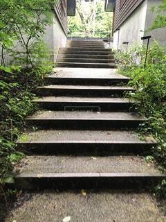 雨上がりの階段の写真・画像素材[2395515]