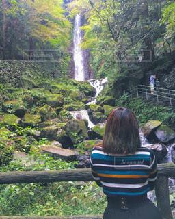 滝を眺める女性の写真・画像素材[798193]