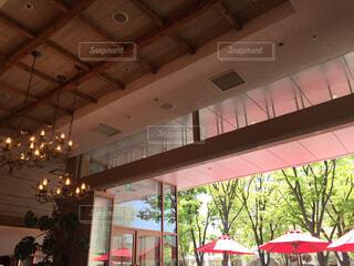 陽当たりのいいカフェの写真・画像素材[1572004]