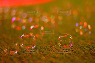 近くにガラスのアップの写真・画像素材[1681525]