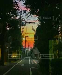夕暮れの写真・画像素材[1573703]