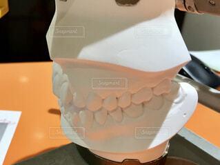 歯の模型の写真・画像素材[1716299]
