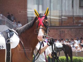 建物の前に馬に乗る人の写真・画像素材[1698274]