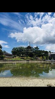 猿沢池の中から撮影した五重の塔の写真・画像素材[1574419]