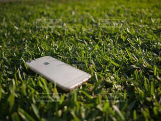 芝生とiPhoneの写真・画像素材[1572702]