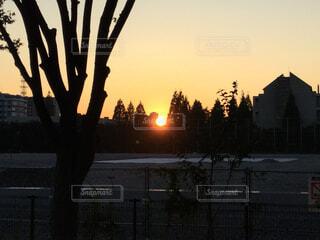 夕日の写真・画像素材[1572267]