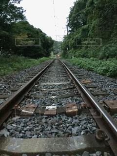 線路の写真・画像素材[1575305]