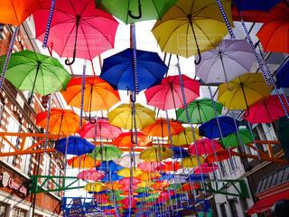 傘の写真・画像素材[1575623]