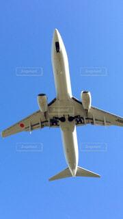 飛行機の写真・画像素材[1575732]