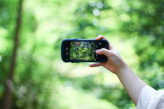 携帯電話を持つ手の写真・画像素材[4123217]
