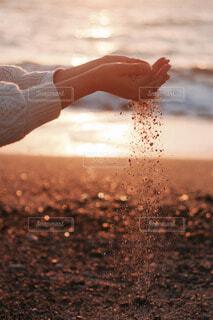 浜辺で手袋を持つ手の写真・画像素材[4123230]