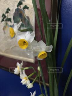 テーブルの上の花の花瓶の写真・画像素材[1702963]