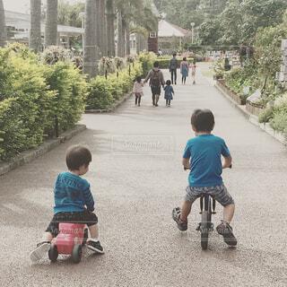 2人仲良くサイクリングの写真・画像素材[1654354]