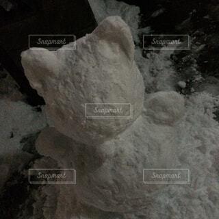 猫型雪だるま作成中の写真・画像素材[1578704]