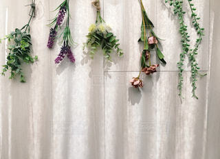 飾りの花の写真・画像素材[1619197]