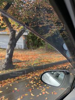 車から紅葉の写真・画像素材[1582768]