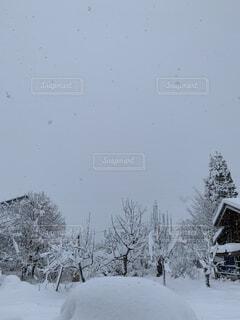 雪に覆われたの写真・画像素材[1662158]