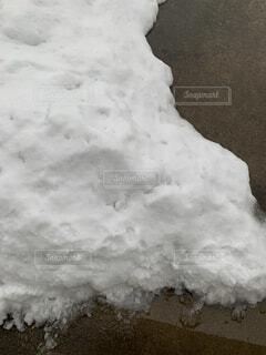 雪の中の写真・画像素材[1679889]