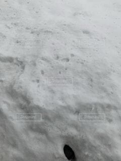 近く雪に覆われたフィールドの写真・画像素材[1679896]