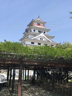 唐津城の写真・画像素材[1604679]