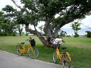 自転車の写真・画像素材[1626216]