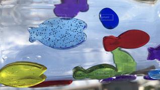 空飛ぶ魚の写真・画像素材[1655074]