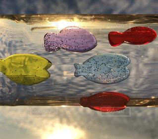 雲と魚と太陽の写真・画像素材[1665688]
