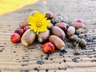 小さい秋の収穫祭の写真・画像素材[1585926]