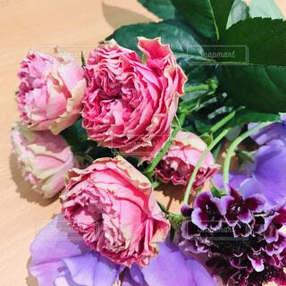 ビビットな花束の写真・画像素材[1647835]