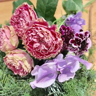 花束の写真・画像素材[1647836]