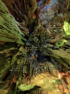 鍾乳洞の写真・画像素材[1585884]