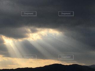陽光の写真・画像素材[1597204]