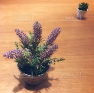 卓上造花の写真・画像素材[1584303]