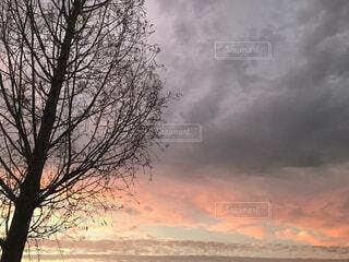 湖(うみ)の暮れどきの写真・画像素材[1584971]