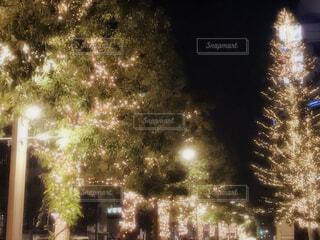 夜の街の賑やかの写真・画像素材[1644950]