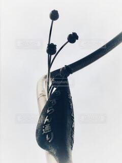神田の写真・画像素材[1831455]