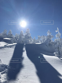 樹氷から伸びる影の写真・画像素材[1589007]