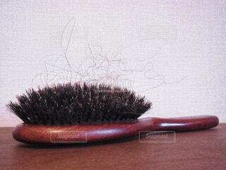ブラシについた抜け毛の写真・画像素材[1591758]