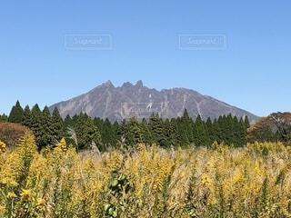 根子岳の写真・画像素材[1590688]