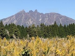 阿蘇 根子岳の写真・画像素材[1590689]