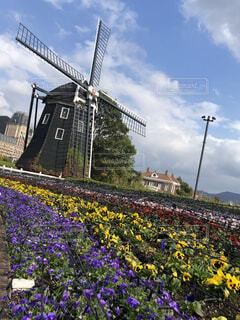 秋の風車の写真・画像素材[1627559]