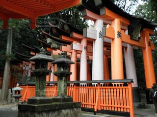 稲荷神社の写真・画像素材[1593883]