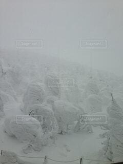 雪の斜面の写真・画像素材[1645860]